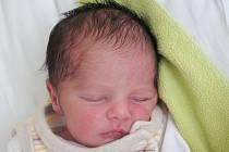 Mamince Renatě Hegedűšové z České Lípy se v sobotu 16. dubna v 15:46 hodin narodil syn Dan Hegedűš. Měřil 47 cm a vážil 2,53 kg.