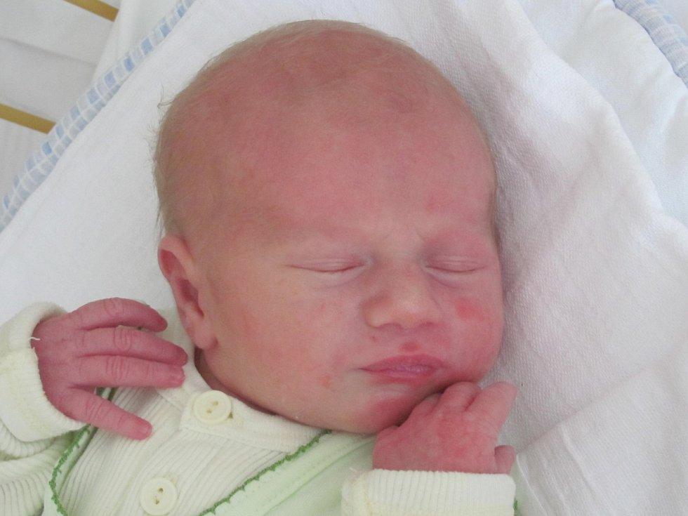 Rodičům Kateřině Košťanové a Filipu Horáčkovi z Nového Boru se v úterý 3. června v 1:34 hodin narodil syn Tobiáš Horáček. Měřil 50 cm a vážil 3,35 kg.