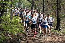 Závodníky v hlavní soutěži čeká 10 kilometrů dlouhá trasa zvlněným kopcovitým terénem Lužických hor.