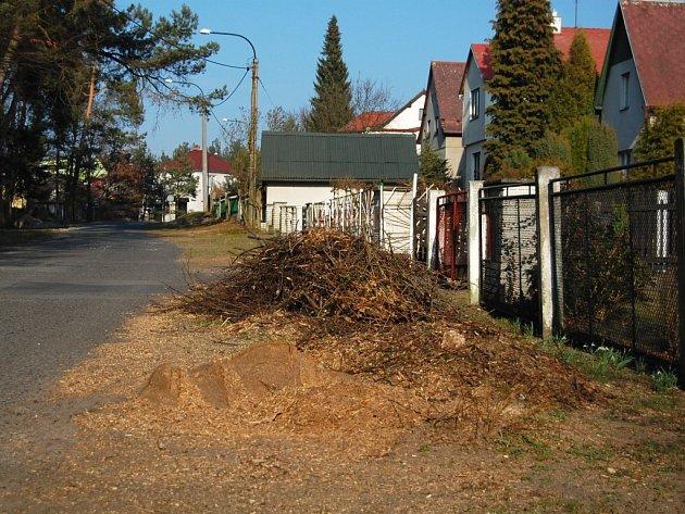 Z bezmála dvaceti lip, které lemovaly pravou stranu ulice, zbyly jen větve a piliny.