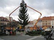 Pracovníci firmy, která strom instalovala, už sundali ozdoby. Ještě dnes bude na náměstí stát nový.
