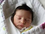 Rodičům Petře a Václavovi Novotným z Rumburku se ve středu 14. února v 0:41 hodin narodila dcera Eliška Novotná. Měřila 49 cm a vážila 3,14 kg.