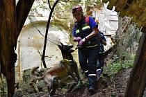Psovodi z celé republiky přijeli se svými čtyřnohými pomocníky do Jablonného v Podještědí bojovat o účast na mistrovství psovodů záchranných psů. Kvalifikační závod však nakonec vypadal jinak, než očekávali.