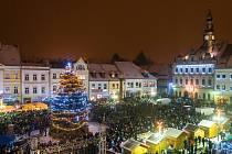 Vánoční strom na českolipském náměstí.