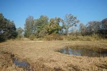 Liberecký kraj nechal v přírodních památkách na Českolipsku vybudovat celkem 40 tůní. Mají zlepšit kvalitu prostředí zejména pro chráněnou kuňku ohnivou, ale přispějí i k zadržování vody v krajině.