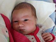 Rodičům Kristýně Hovorkové a Janu Stehlíkovi z Janova se v sobotu 13. ledna v 19:31 hodin narodila dcera Rozálie Stehlíková. Měřila 53 cm a vážila 4,12 kg.