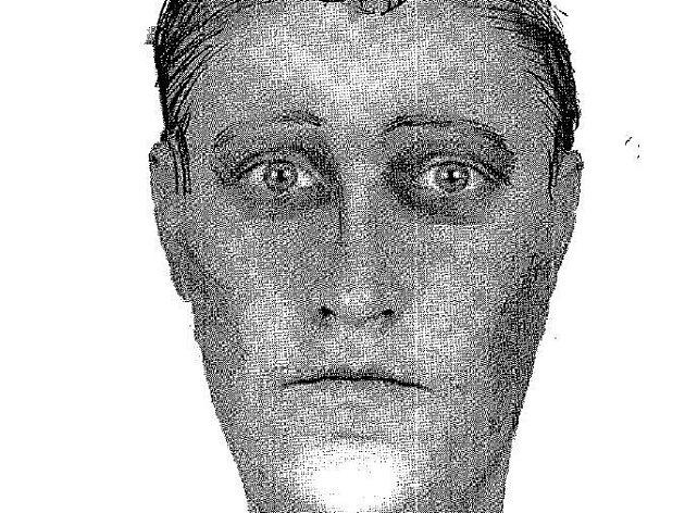 Trojice mužů agresora popsala jako muže ve věku mezi 20 až 25 lety, výšky zhruba 180 centimetrů s blond vlasy, štíhlé postavy a zřejmě s modrýma očima.