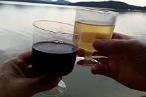 Burčáky, výborná vína z Jihu Moravy a zábava pro celou rodinu přivádějí každoročně na půldruhého tisíce návštěvníků do areálu hotelu Port v Doksech. Letošní již 8. ročník Vinobraní u Máchova jezera a zábavného odpoledne pro děti nebyl výjimkou.