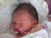 Rodičům Jaroslavě Štefanové a Pavlu Schedelbauerovi z Kamenického Šenova se v neděli 1. ledna v 15:17 hodin narodila dcera Sofie Schedelbauerová. Měřila 49 cm a vážila 3 kg.