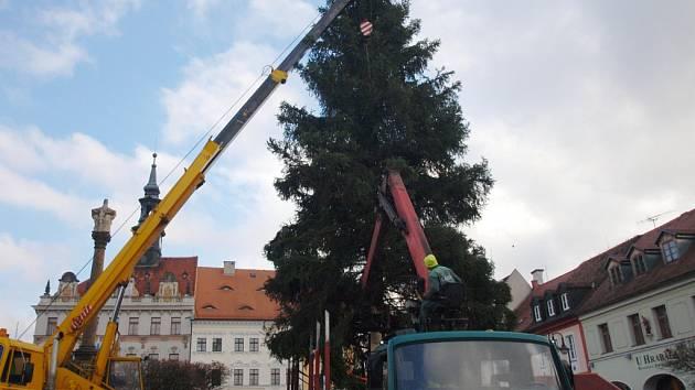 Pondělní instalace vánočního stromu pro Českou Lípu.