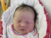 Rodičům Karolíně a Lukášovi Davidovým - Machovým z České Lípy se v pondělí 10. prosince v 11:26 hodin narodila dcera Liliana Davidová – Machová. Měřila 50 cm a vážila 3,99 kg.