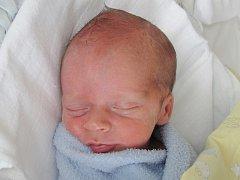 Rodičům Radce a Jakubovi Kremlovým z Doks se ve čtvrtek 19. května ve 13:45 hodin narodil syn Jakub Kreml. Měřil 40 cm a vážil 1,93 kg.