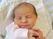 Mamince Michaele Svobodové z Nového Boru se v úterý 6. února narodila dcera Michaela Svobodová. Měřila 48 cm a vážila 3,42 kg.
