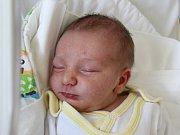 Rodičům Aleně Doubravové a Pavlu Sekovi z České Lípy se v pátek 26. října v 16:59 hodin narodil syn Jaroslav Seko. Měřil 50 cm a vážil 3,44 kg.
