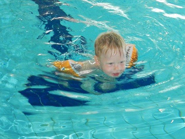 Již tradiční plavecké závody dětí s názvem Českolipská ploutvička 2017 se uskutečnily v České Lípě.