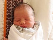 Rodičům Monice a Lukášovi Slavíkovým z České Lípy se v pondělí 2. října v 7:57 hodin narodil syn Oliver Slavík. Měřil 46 cm a vážil 3,12 kg.