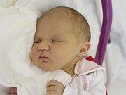 Mamince Marii Mikové z Jablonného v Podještědí se v pondělí 26. března ve 23:55 hodin narodila dcera Aneta Kotrčová. Měřila 48 cm a vážila 2,65 kg.