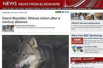 """Britská BBC publikovala zprávu o vlkovi z Břehyně na svém webu pod titulkem """"Czech Republic: Wolves return after a century absence"""" (Česká republika: Vlci se vrátili po století nepřítomnosti"""")."""