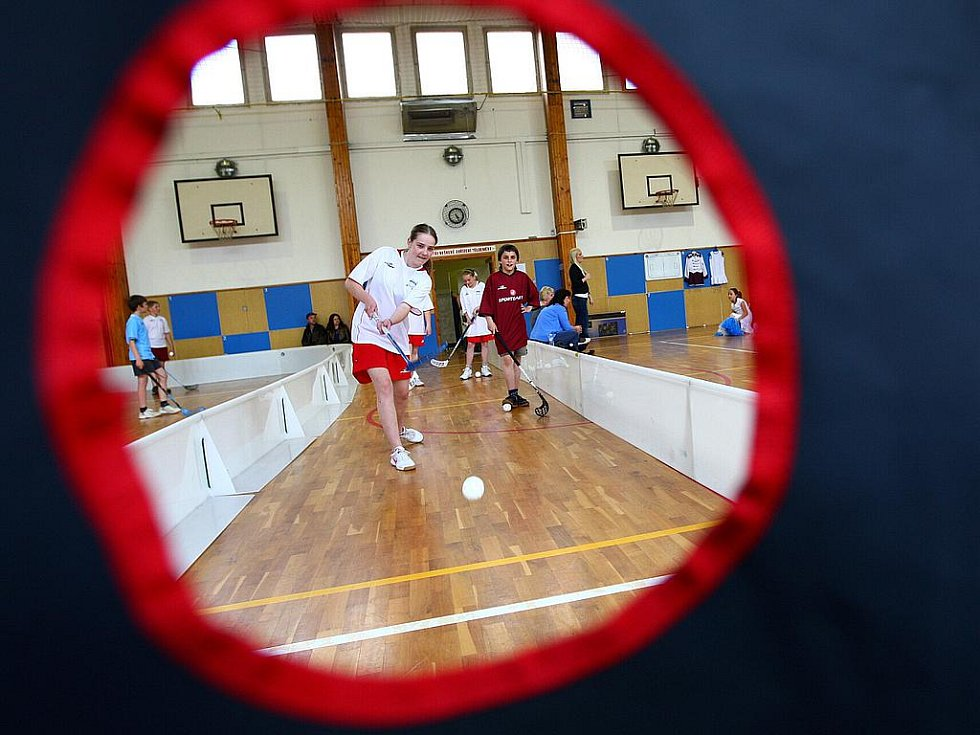 Návštěvníci mohli vidět trénink roztleskávaček i florbalový tým školy, stejně tak práci učitelek ve třídách a sami se mohli zapojit do různých her a činností nebo si zahrát fotbálek.