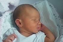 Rodičům Martině a Martinovi Petříkovým se ve středu 11. listopadu narodila dcera Natálie Petříková. Měřila 50 cm a vážila 3,23 kg.