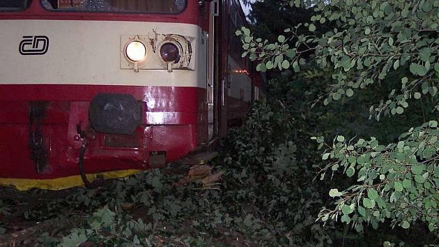 Vlak, který mířil z Nového Boru na Svor, najel na spadlý strom.
