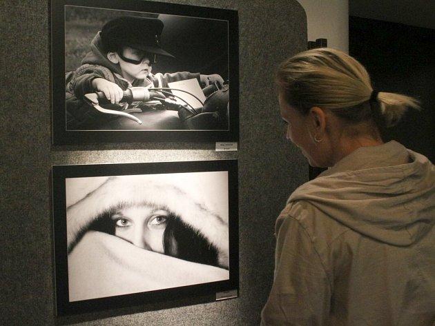 Putovní výstavu fotografií Klubu příznivců Pentaxu můžete zhlédnout do konce prázdnin v Městském kině v Novém Boru.