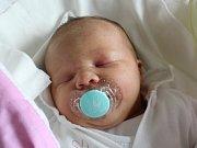 Rodičům Denise a Janovi Bystrákovým z České Lípy se ve středu 28. června ve 14:13 hodin narodila dcera Vanesa Bystráková. Měřila 49 cm a vážila 3,3 kg.