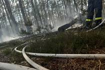 Hasiči z Doks během 40 minut zamezili šíření požáru lesa v obci Dubá - Plešivec na Českolipsku.