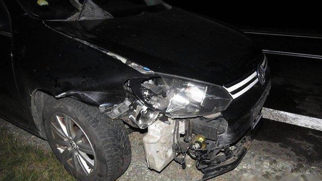 Řidiči volkswagenu vběhlo u Dubé pod kola stádo divočáků.