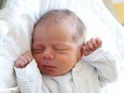 Rodičům Petře Breburdové a Michaelu Čepelákovi z Kytlic se v sobotu 27. října ve 2:51 hodin narodil syn Karel Čepelák. Měřil 49 cm a vážil 2,92 kg.