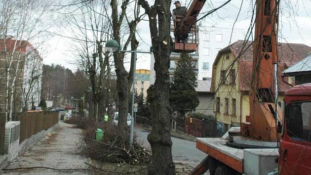 V ulici Rumburských hrdinů v Novém Boru prořezávají lipovou alej