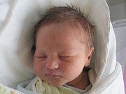 Rodičům Kateřině a Davidovi Pelzmannovým z České Lípy se ve středu 14. prosince v 6:30 hodin narodil syn Matyáš Pelzmann. Měřil 50 cm a vážil 3,13 kg.