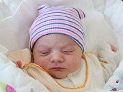Rodičům Drahomíře Kowalové a Karlu Švecovi z České Lípy se v úterý 30. října ve 4:00 hodin narodila dcera Natálie Nela Švecová. Měřila 50 cm a vážila 3,38 kg.
