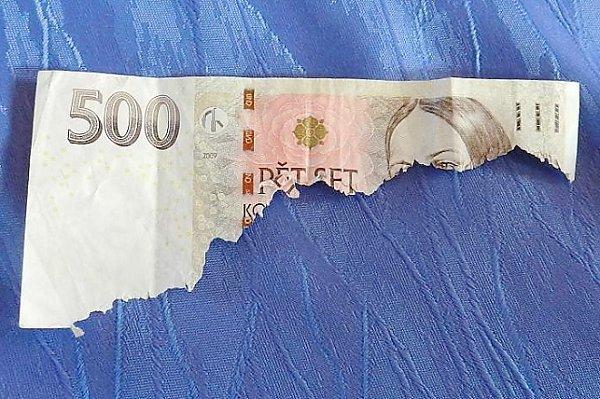 Peníze pro psa.