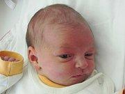 Rodičům Nikole a Michalovi Barákovým z České Lípy se v pátek 21. října v 11:28 hodin narodila dcera Rozálie Baráková. Měřila 49 cm a vážila 3 kg.