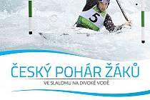 Český pohár ve slalomu na divoké vodě hostí Stružnice.
