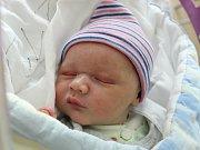 Rodičům Elišce Pechové a Vítu Zárubovi z České Lípy se ve čtvrtek 31. srpna narodil syn Vít Záruba. Měřil 53 cm a vážil 3,44 kg.