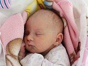 Rodičům Simoně Svobodové a Martinu Štěpánkovi z Kravař v Čechách se v úterý 27. listopadu v 19:24 hodin narodila dcera Adéla Svobodová. Měřila 49 cm a vážila 2,76 kg.