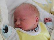 Rodičům Kristýně Šustrové a Vojtěchu Holubovi ze Skalice u České Lípy se v pondělí 19. února v 9:08 hodin narodil syn Pavel Holub. Měřil 50 cm a vážil 3,43 kg.