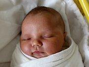 Mamince Ludmile Davydové z České Lípy se ve středu 14. února ve 4:14 hodin narodila dcera Sofie Melnikova. Měřila 51 cm a vážila 4,08 kg.