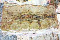 V paletách prodavačky našly často plíseň i myší hnízdo.