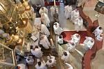Slavnostní požehnání a mše svatá v kostele Navštívení Panny Marie v Horní Polici, po dvouleté rekonstrukci poutního areálu.