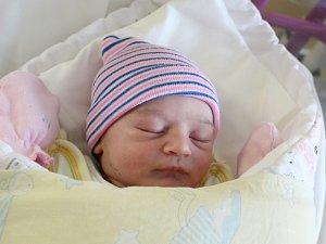 Rodičům Denise Mičnunovičové a Janu Skopovému z Rumburku se ve středu 17. října ve 21:28 hodin narodila dcera Denisa Skopová. Měřila 50 cm a vážila 3,12 kg.
