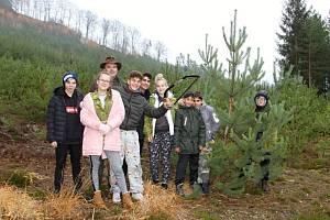 Státní podnik dodal borovičky, které jsou typickou dřevinou Ralska, letos nejen do osmi dětských domovů v kraji či do místních škol, ale letos poprvé také do domovů pro seniory.