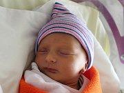 Rodičům Andree Hollé a Davidu Kratinovi z Rumburku se ve čtvrtek 26. října ve 3:45 hodin narodila dcera Beata Hollá. Měřila 45 cm a vážila 2,57 kg.
