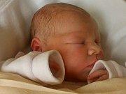 Rodičům Michaele Novotné a Janu Liškovi se ve středu 9. listopadu v 8:48 hodin narodila dcera Lucie Lišková. Měřila 51 cm a vážila 3,85 kg.