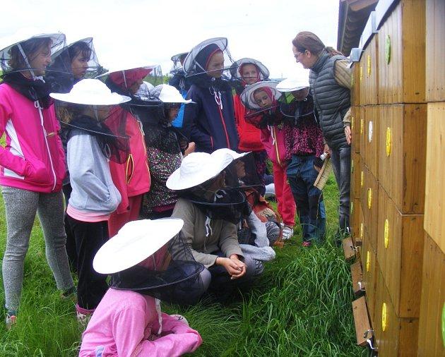 Do fascinujícího světa včel mohou na ekofarmě vJezvé již šestým rokem nahlédnout děti zmateřských istředních škol.