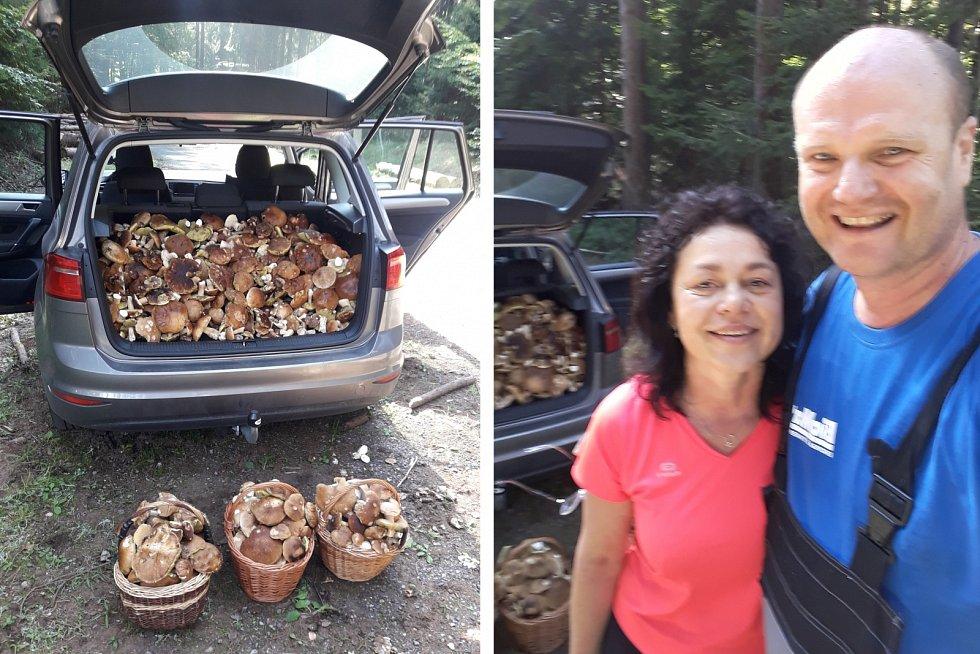 Zdeňka a Vlastík za tři hodiny v lese na Českolipsku shromáždili 65 kilo hřibů