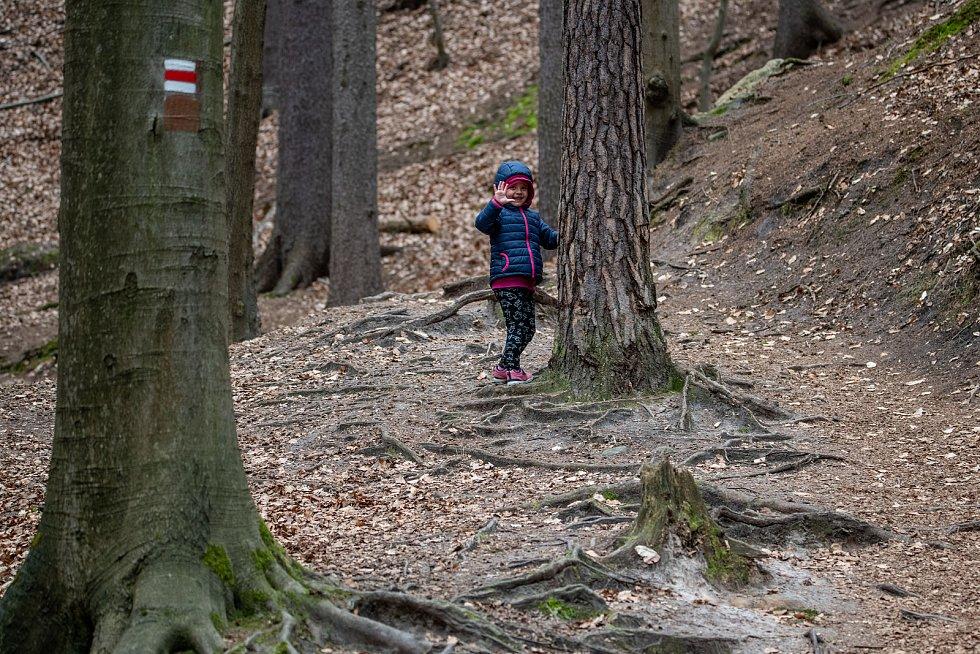 Juliina vyhlídka je na cestě, která vede k vrcholu Ralska.