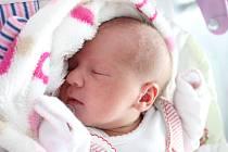 Rodičům Nikole Novotné a Dušanu Cinovi z České Lípy se ve čtvrtek 12. září v 8:57 hodin narodila dcera Marie Veronika Cinová. Měřila 48 cm a vážila 2,71 kg.